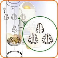 Extracting Bulb Set w/metal insert includes Lemon,Orange,Grapefruit Bulb O2